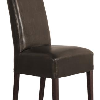 Jídelní židle PALMA