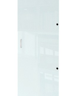 Skleněné dveře Mega 181