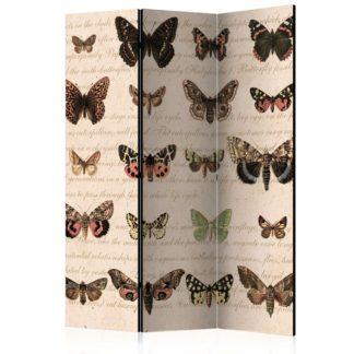 Paraván Retro Style: Butterflies Dekorhome 135x172 cm (3-dílný)
