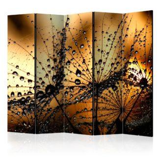Paraván Dandelions in the Rain Dekorhome 225x172 cm (5-dílný)
