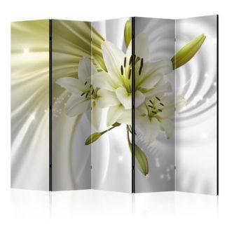 Paraván Green Captivation Dekorhome 225x172 cm (5-dílný)