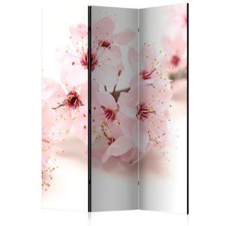 Paraván Cherry Blossom Dekorhome 135x172 cm (3-dílný)