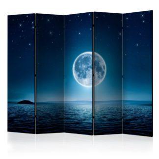 Paraván Moonlit night Dekorhome 225x172 cm (5-dílný)