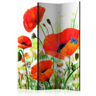 Paraván Country poppies Dekorhome 135x172 cm (3-dílný)