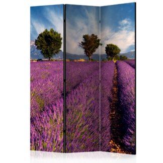 Paraván Lavender field in Provence, France Dekorhome 135x172 cm (3-dílný)