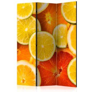 Paraván Citrus fruits Dekorhome 135x172 cm (3-dílný)