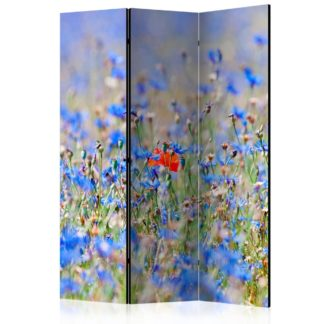 Paraván A sky-colored meadow - cornflowers Dekorhome 135x172 cm (3-dílný)