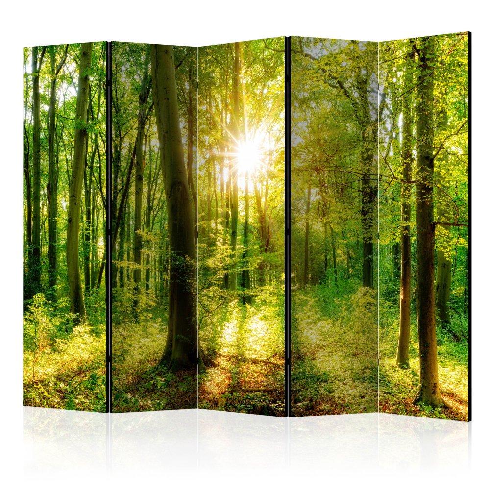 Paraván Forest Rays Dekorhome 225x172 cm (5-dílný)