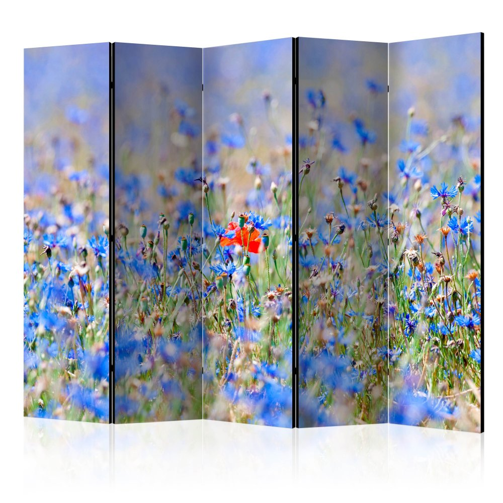 Paraván A sky-colored meadow - cornflowers Dekorhome 225x172 cm (5-dílný)