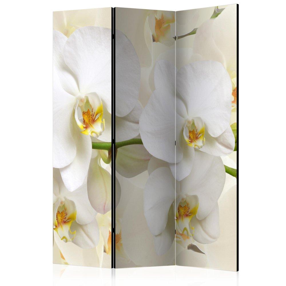 Paraván Orchid Branch Dekorhome 135x172 cm (3-dílný)