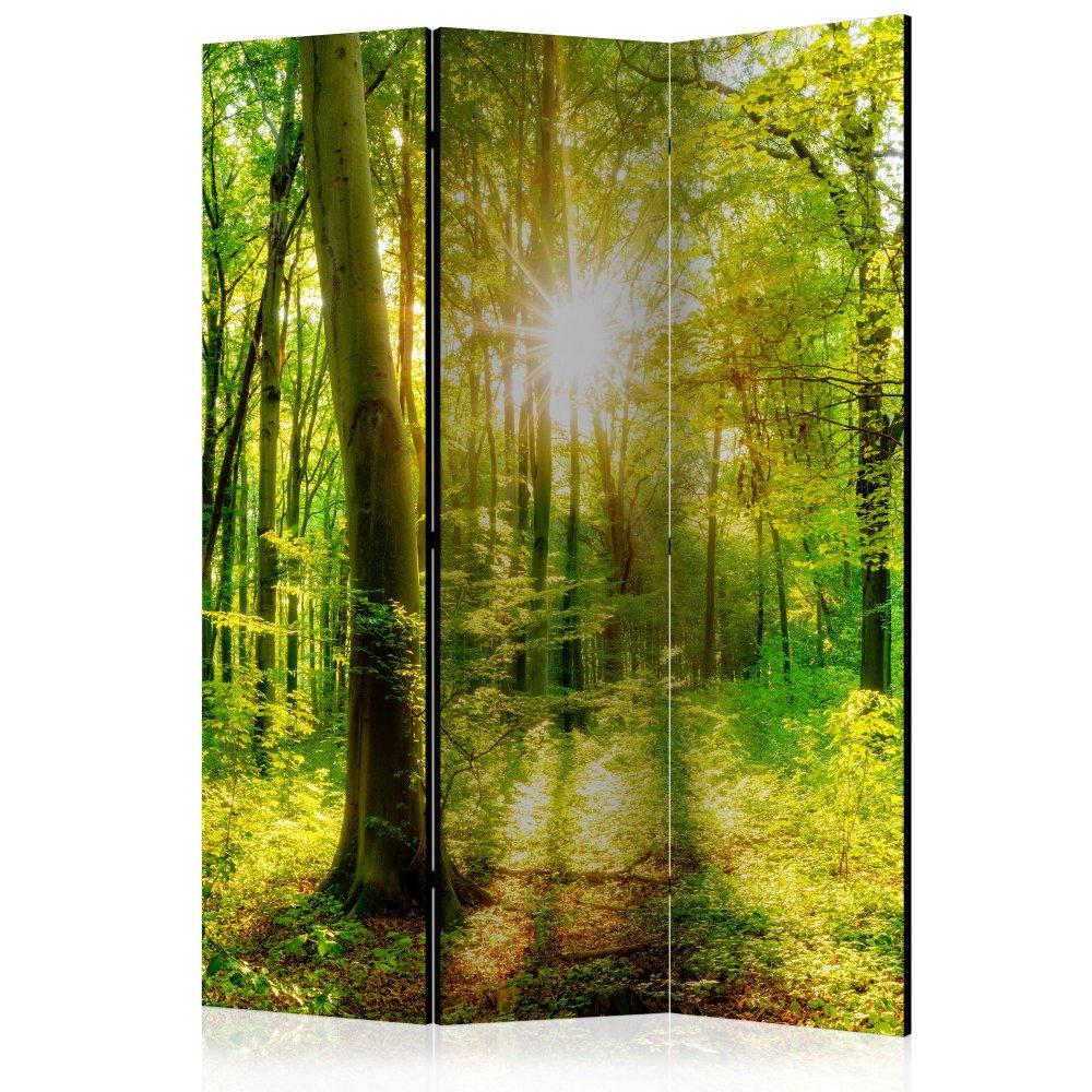 Paraván Forest Rays Dekorhome 135x172 cm (3-dílný)