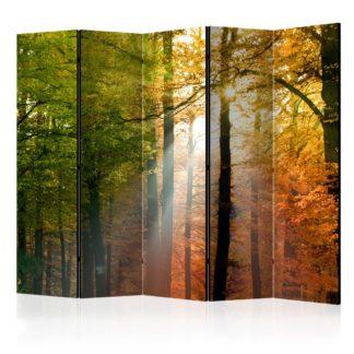 Paraván Forest Colours Dekorhome 225x172 cm (5-dílný)