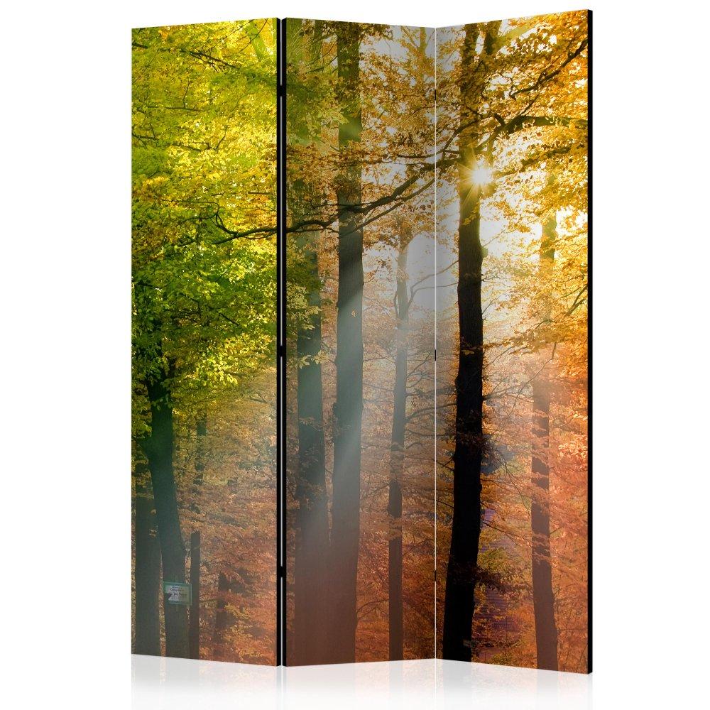 Paraván Forest Colours Dekorhome 135x172 cm (3-dílný)