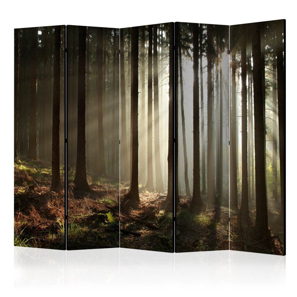 Paraván Coniferous forest Dekorhome 225x172 cm (5-dílný)