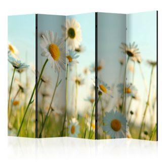 Paraván Daisies - spring meadow Dekorhome 225x172 cm (5-dílný)