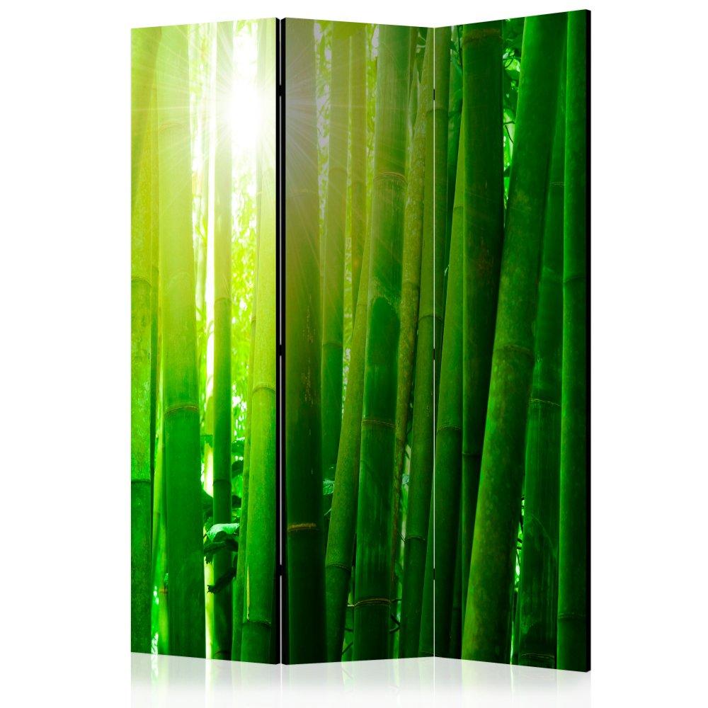 Paraván Sun and bamboo Dekorhome 135x172 cm (3-dílný)