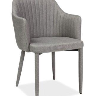 Jídelní čalouněná židle WELTON, světle šedá